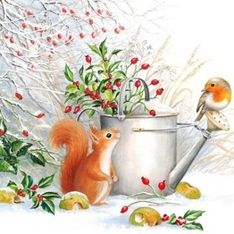 Christmas Napkins Red Squirrel & Robin pack of 20