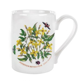 Portmeirion Pottery Seconds Botanic Garden Coffee Mug 0.5pint