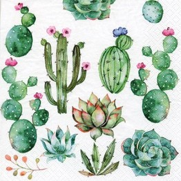 Tiflair Cactus & Succulents Lunch Napkins 3 ply