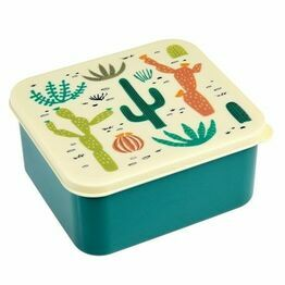 BPA Free Lunch Box Desert in Bloom 27114