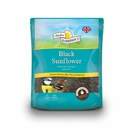 Harrisons Black Sunflower Seed 1.6Kg