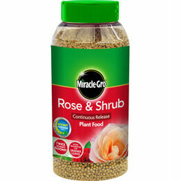 Miracle-Gro Rose & Shrub Continuous Release Plant Food