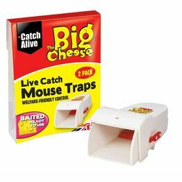 STV Live Catch Mouse Traps STV155
