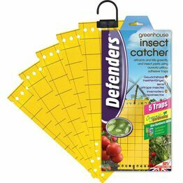 STV Times Up Greenhouse Insect Catcher STV017
