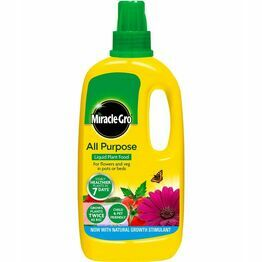 Miracle-Gro All Purpose Concentrated Plant Food 1ltr