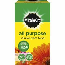 Miracle-Gro All Purpose Soluble Plant Food 1kg