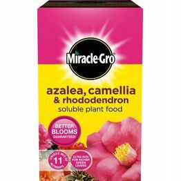 Miracle-Gro Ericaceous Plant Food 1kg