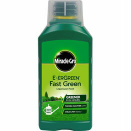 Miracle-Gro EverGreen Fast Green Liquid Concentrate 1Ltr