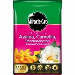 Miracle-Gro Premium Azalea Camellia & Rhododendron Ericaceous Compost 40ltr