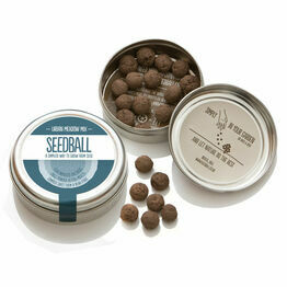 Seedball Tin Urban Meadow Mix