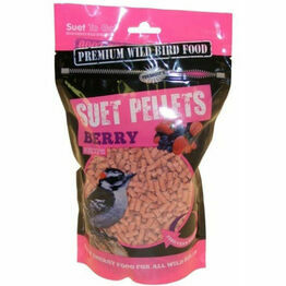 Suet To Go Pellets 550g - Berry