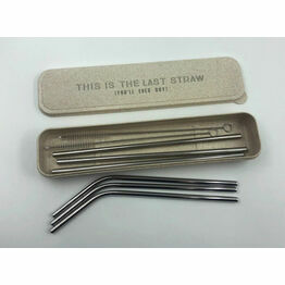 Stainless Steel Straws & Case