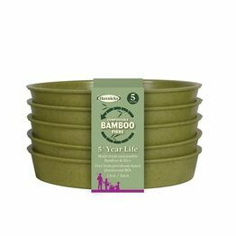 Haxnicks Bamboo Saucer Pack of 5 Sage Green