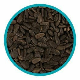 Black Sunflower Seeds 1kg bag