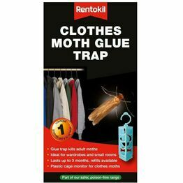 Rentokil Clothes Moth Glue Trap FMP13