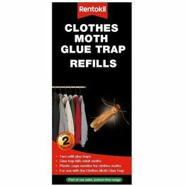 Rentokil Clothes Moth Glue Trap Refill FMP14